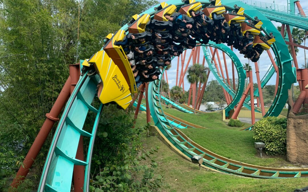 Lifes a rollercoaster – knowing your story will help you through!